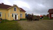 Kierinki ja Hietalan pihapiiri. Kyläraitilla kiertävät vossikka ja traktoritaksi tarjoavat markkinavieraille palvelujaan. Kuva: Teija Raaterova